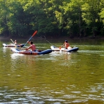 Paddlers on New River near Quinnimont, WV, Fayette County, New River Gorge Region