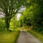 Country road near Apple Farme, WV, Calhoun County, Heartland Region