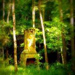 Chimney on Big Two Run, Cedar Creek State Park, Gilmer County, Heartland Region