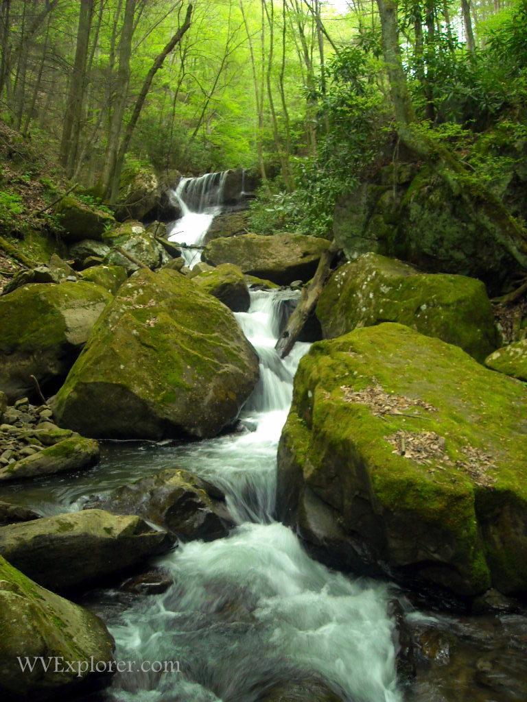 Keeneys Creek near Winona