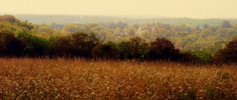 Field near New Manchester