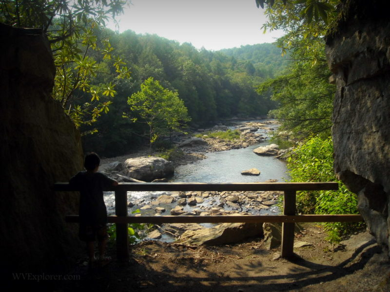 Middle Fork at Audra State Park, Barbour County, Monongahela Valley Region