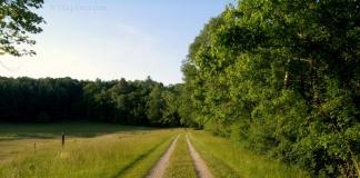 North Bend Trail near Cornwallis, WV, Ritchie County, Heartland Region
