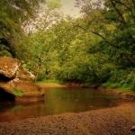 Pocatalico Rive near Walton, WV, Roane County, Heartland Region