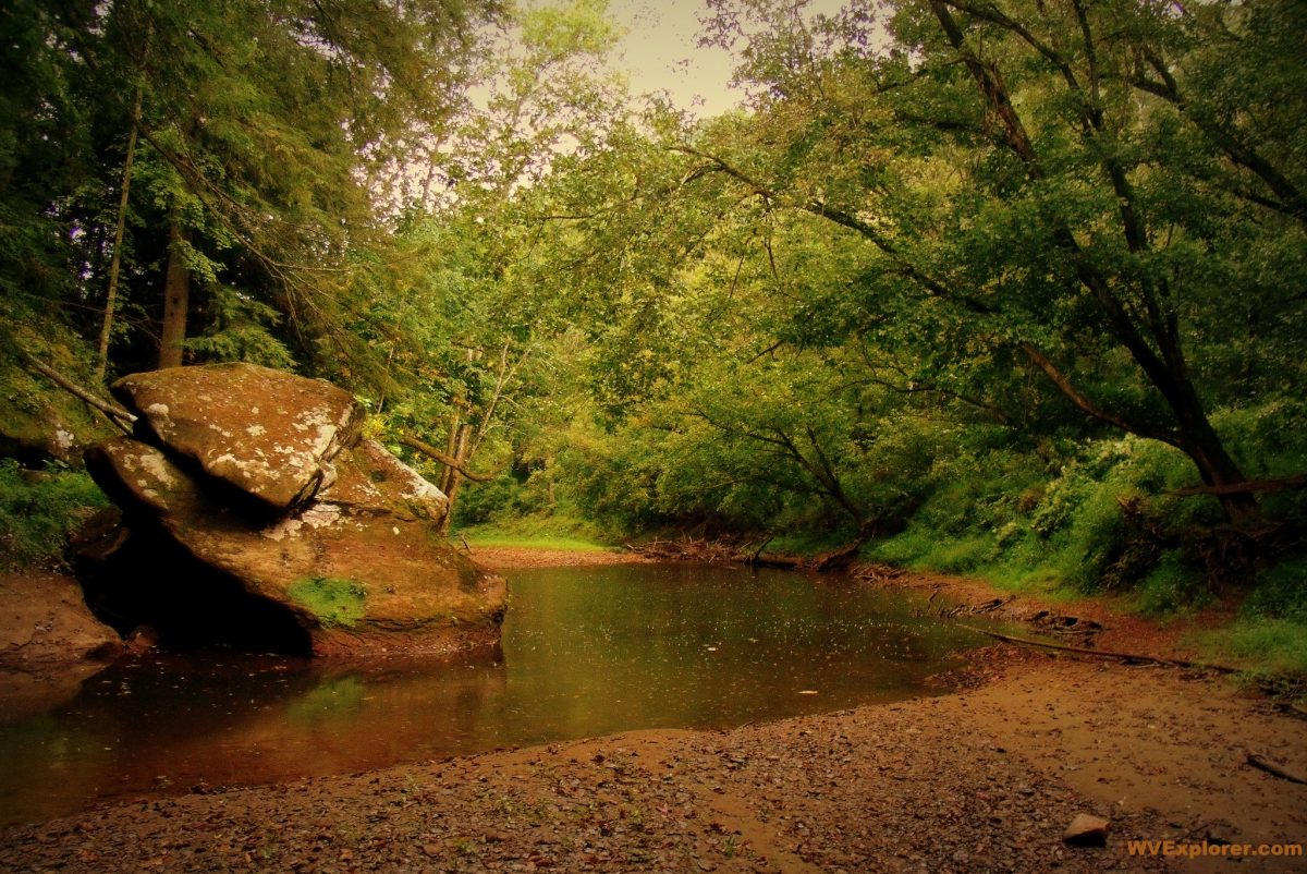 Pocatalico River near Walton