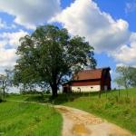 Barn near the Natural Bridge in Roane County near Clio, WV, Heartland Region