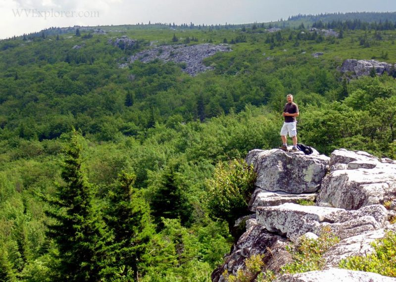 Allegheny Front at Dolly Sods