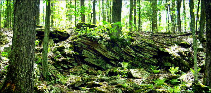 Twisted rocks at Little Beaver State Park