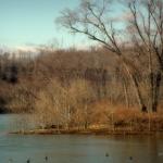 Wells Island near Sistersville, WV, Tyler County, Ohio River Islands National Wildlife Refuge, Mid-Ohio Valley Region