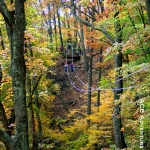 Canopy tour in autumn, New River Gorge, ACE Adventure Resort
