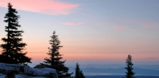 Bear Rocks Pink Morning, Dolly Sods Wilderness Area