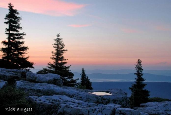 Bear Rocks Pink Morning, Dolly Sods Wilderness Area