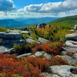 September view at Dolly Sods Wilderness, Tucker County, Allegheny Highlands Region