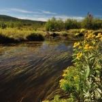 Blackwater Trail in Canaan Valley, WV, Tucker County, Allegheny Highlands Region, Ed Rehbein
