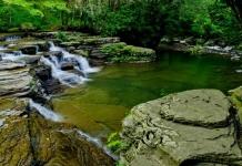 Campbell Falls at Camp Creek State Park, Mercer County, Bluestone Region