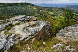 Canaan Valley slopes in summer, Canaan Valley Resort State Park, Allegheny Highlands Region