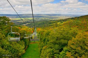 View from ski lift at Canaan Valley State Park, Tucker County, Allegheny Highlands Region