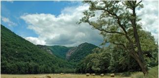 Champe Rocks near Seneca Rocks, Grant County, Potomac Branches Region