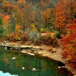 Cheat River, Preston County, Allegheny Highlands Region