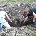 Clearing brush from cave entrance