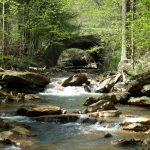 Drawdy Creek in Boone County near Peytona, WV, Hatfield & McCoy Region
