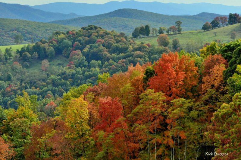 Grant County Landscape