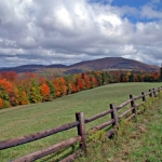 Field along Highland Scenic Highway, Pocahontas County, Allegheny Highlands Region