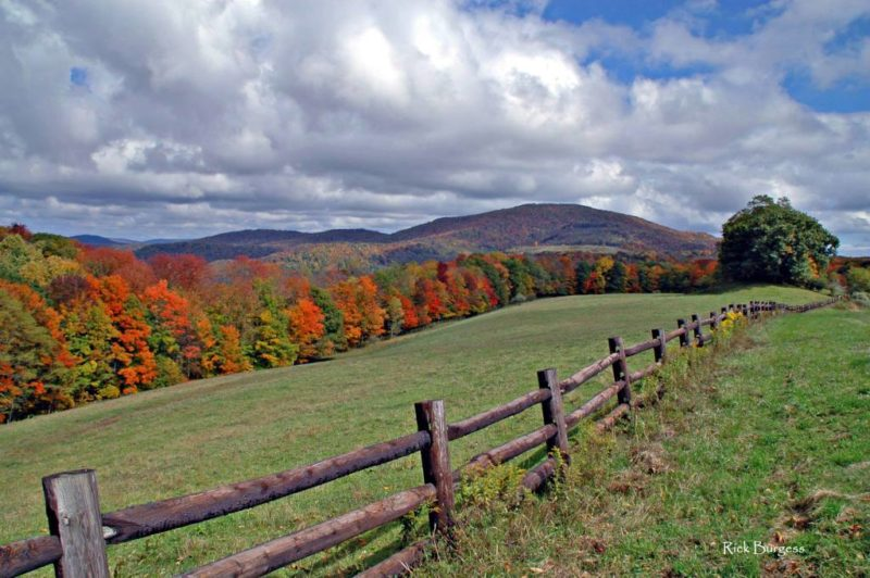 On Highland Scenic Highway