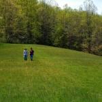 Field near Ireland, WV, Lewis County, Monongahela Valley Region