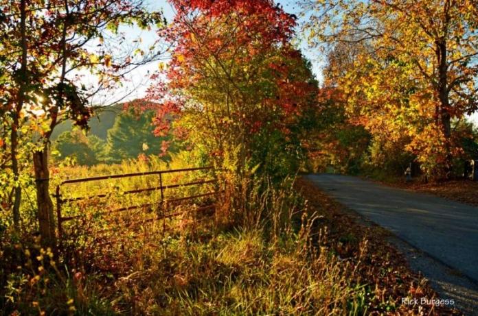 Backroad in Mercer County, Bluestone Region