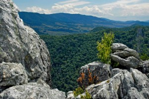 View from Nelson Rocks, Nelson Rocks Climbing Area. Pendleton County, Potomac Branches Region