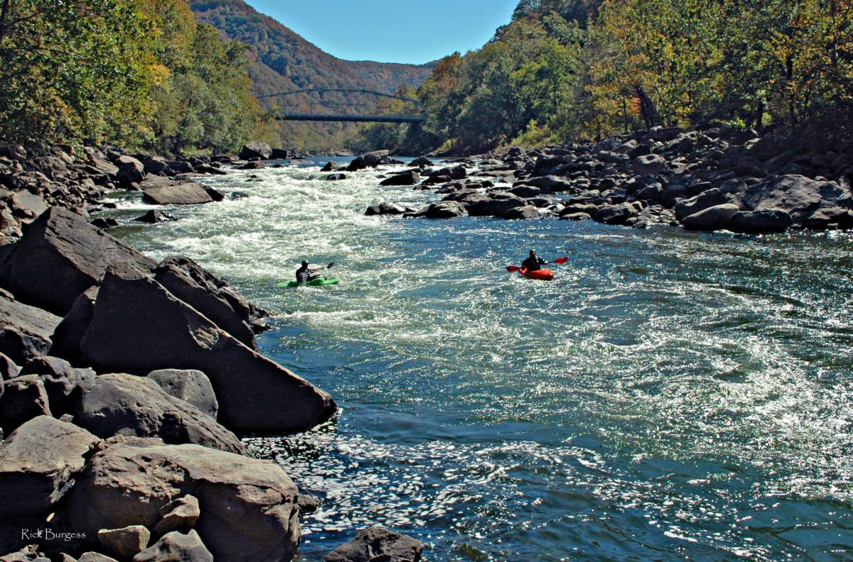New River Kayakers by Burgess