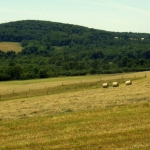 Pasture, Preston County, Allegheny Highlands Region