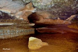 Inside the Sinks of Gandy, Randolph County, Allegheny Highlands Region