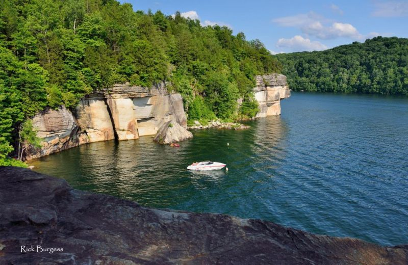 Cove At Summersville Lake West Virginia Explorer