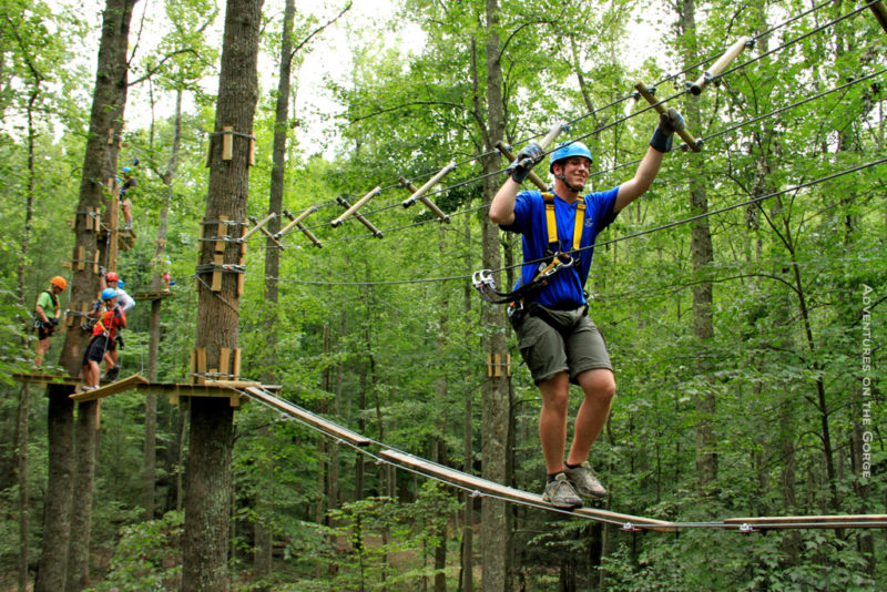Learning the ropes on Timber Trek
