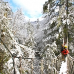 Guests on canopy tour in winter, Adventures on the Gorge