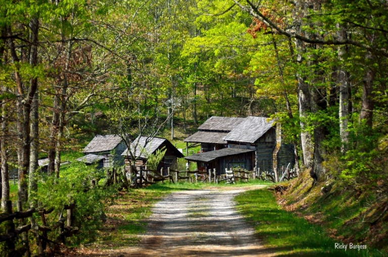 W.Va. State Parks to host second Farm-to-Table dinner series