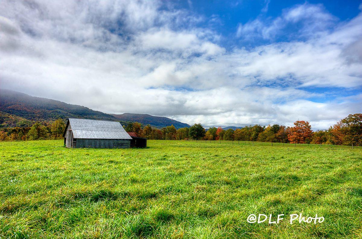 Barn near Dolly Sods