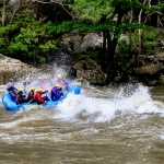 Rafters charge into wave on Gauley River, Nicholas County, New River Gorge Region