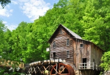 Early Summer at Babcock Mill, Babcock State Park, Fayette County, New River Gorge Region