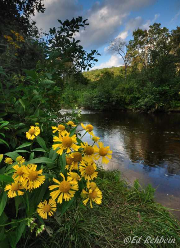 Autumn in the Allegheny Mountains, Ed Rehbein, Allegheny Highlands Region