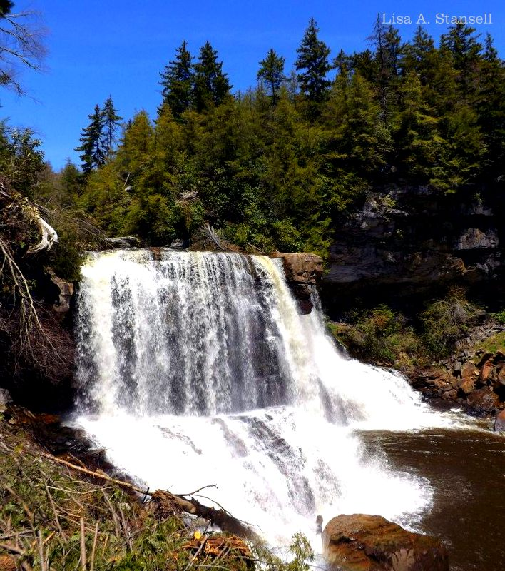 Blackwater Falls at Blackwater Falls State Park