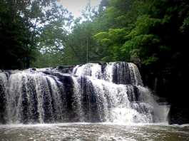 Brush Creek Falls near Pipestem