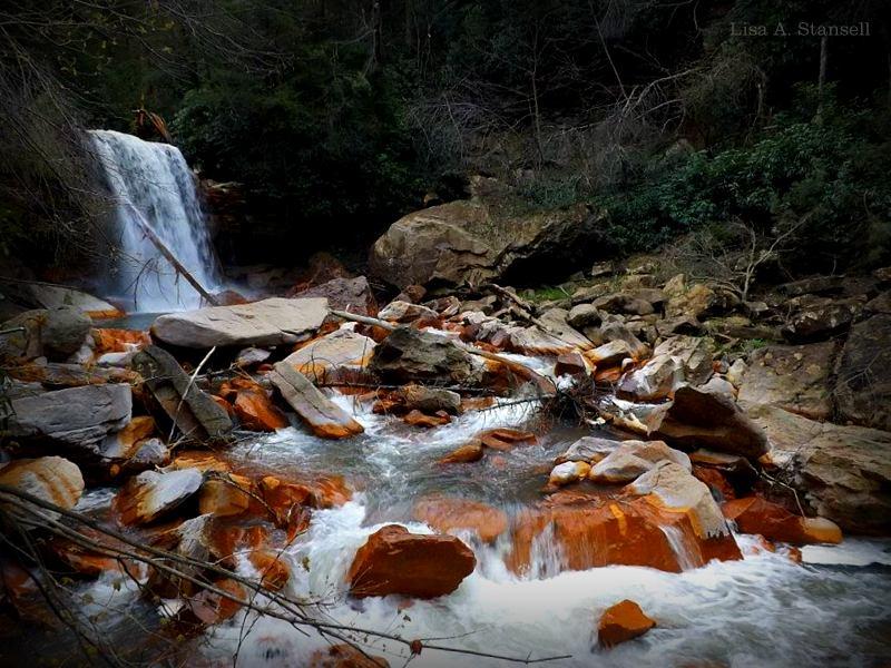 Blackwater Falls at Blackwater Falls State Park