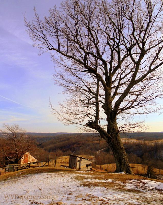 Colt Ridge