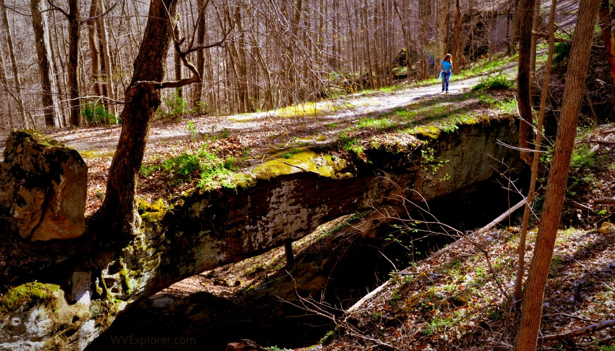Natural Bridge near Clio, West Virginia, Roane County