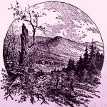 Mountain Scene in Randolph County WV