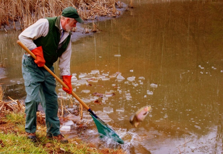 Trout being stocked in five park lakes in advance of Earth Day 2017