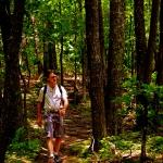 Hiker birding, Kanawha State Forest, Kanawha County